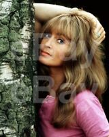 The Persuaders (TV)   Suzy Kendall 10x8 Photo