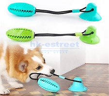 Pet Molar Bite Chew Toy Floor Suction Cup TPR Safe Dog Cleaning Teeth Ball US