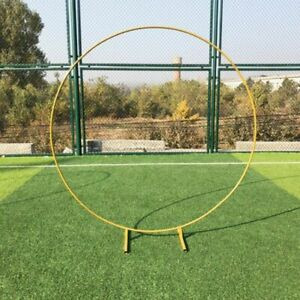 Ring Iron Wedding Arch Props Background Circle Outdoor Lawn Wedding Flower Decor