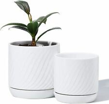 Plant Pots with Drainage Holes&Saucer-Glazed Ceramic Modern Planters Indoor