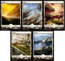 MTG Magic - La Bataille de Zendikar - Les 5 Plaines Full Art -  VF