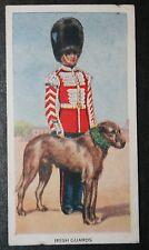Irish Guards  Wolfhound Mascot   Original Vintage Card  VGC