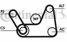 CONTITECH Drive Belt Set for FORD FIESTA FUSION 6PK1019T1 - Mister Auto