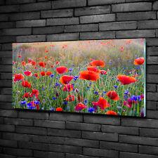 Wandbild aus Plexiglas® Druck auf Acryl 100x50 Blumen & Pflanzen Wildblumen