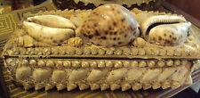 cabinet de curiosites 1900 cofanetto portagioie conchiglie madreperla