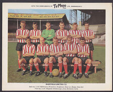 Ty-Phoo - Famous Fooball Clubs 2nd Series 1965 - Sheffield United