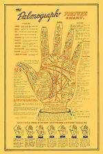 Palmograph Poster Print 24x36 PA0312