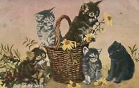 1909 VINTAGE 5 KITTENS PLAYING with FLOWERS POSTCARD - sent Broadwater, Sussex