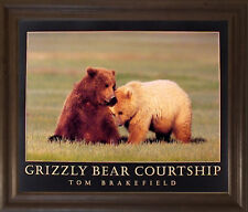 Grizzly Bear Courtship Wildlife Animal Wall Decor Brown Rust Framed Art Picture