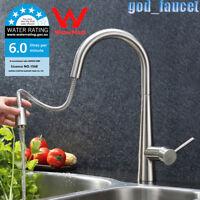 Gooseneck Brushed Nickel Kitchen Pull Out Spray Sink Mixer Swivel Taps Faucet