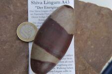 Shiva Lingam A43 Energiestein ca.7,97 cm hoch 138,6g   Shiva Lingam