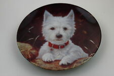 Royal Worcester Plate West Highland White Terrier by John Silver SIGNED Plate N1