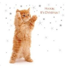Noël Câlin Ginger chaton chat lot de 10 petits carrés Cartes de Noël Jane Burton