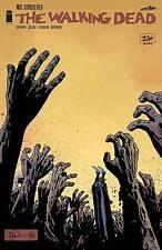 x2 The Walking Dead #163 (Charles Adlard cover) m/nm Image Comics