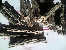 """6-1/2""""L UNTREATED Cholla Cactus Wood Aquarium Craft Decoration Sold Individually"""