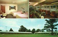 Vintage Postcard Pines Motel Restaurant US Highway 280 Opelika AL Alabama