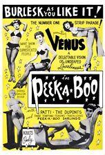 Peekaboo 1953 Burlesque Poster 24x36