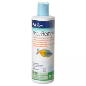 Aqueon Water Care Algae Remover  Free Shipping