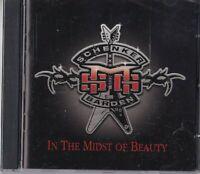 """CD - MSG SCHENKER BARDEN - IN THE MIDST OF BEAUTY  """" NEU VERSCHWEISST #N63#"""