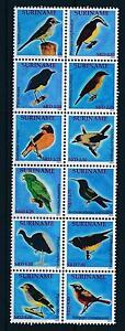 [SU1800] Suriname Surinam 2011 Birds  MNH