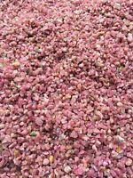 Red Tourmaline gem all natural rough specimens 1/2lb bulk