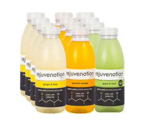 Rejuvenation Water - Variety Pack - Plant based Protein Water 12x500ml