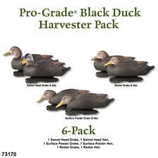 Avery GHG PG Pre-Rigged Black Duck-Harvester Decoys Pk/6)