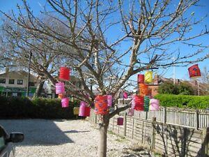 Vintage Paper Chinese Lanterns