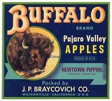 BRAYCOVICH BUFFALO c1920/'s apple Crate Label WATSONVILLE CALIFORNIA early litho