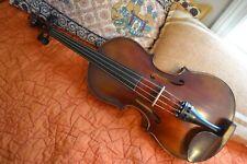 16.5 Inch Viola