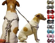 Rhinestones Bone Adjustable Step-In Unisex Dog Harnesses & Matching Leash Set