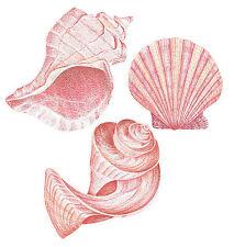 25 Tropical Pink Sea Shells Shell Wallies Wall Stickers Bath Decals Seashells