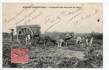 AGRICULTURE CAMPAGNE scenes champetres vie agricole attelage de boeufs récolte
