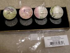 """BIRD BUTTERFLY ROUND MAGNETS SET OF 4 GLASS 1 1/2""""  REFRIGERATOR GREAT GIFT NEW"""