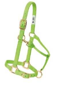 Weaver 35-7434-GR Basic Halter with Adjustable Chin and Throat Snap, Small-Green