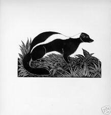 1928 Unusual woodcut skunk mammal