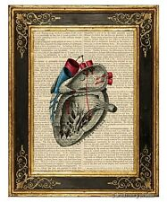 Heart #3 Art Print on Vintage Book Page Medical Anatomy Illustration Home Decor