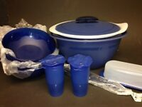 *NEW Tupperware Insulated Oval Server BLUE Serving Dish 6 Bowls & Shakers