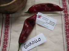 Guajillo Pepper 5+ seeds