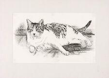 HUGH LAIDMAN SIGNED Rare original c1970s Charcoal Drawing Illustration of CAT