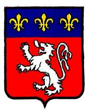 Patch ecusson brodé RHONES ALPES LYON  Blason armoirie drapeau region heraldique