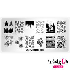 B035 Icy Wonderland Stamping Plate For Christmas Stamped Nail Art Design