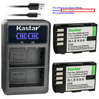 Kastar Battery LCD Dual Charger for Panasonic DMW-BLF19 BLF19E & Lumix DMC-GH3GK