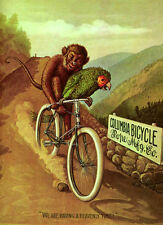 "PARROT MONKEY COLUMBIA BICYCLE BIKE 8"" X 10"" VINTAGE POSTER REPRO FREE SHIPPING"
