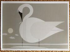 CHARLEY CHARLES HARPER   Trumpeter Swan   Art print postcard  birds audubon