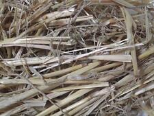 2kg Rabbit guinea pig small animal straw food bedding