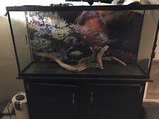 New listing Fish Aquarium