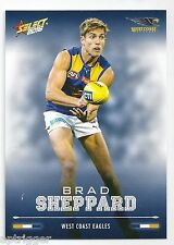 2016 Select Footy Stars Base Card (205) Brad SHEPPARD West Coast