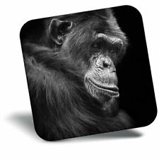 Awesome Fridge Magnet - Chimpanzee Gorilla Monkey Portrait Cool Gift #15875
