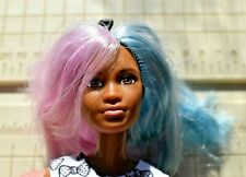 Blue and Pink Hair Barbie Doll